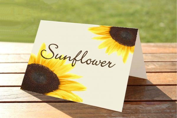 Sunflower Wedding Table Numbers / Names