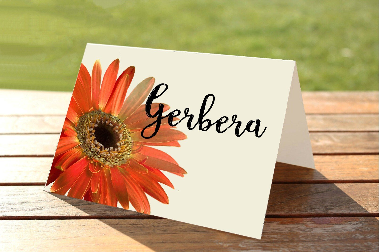 Orange Gerbera Wedding Place Card Table Numbers and Names