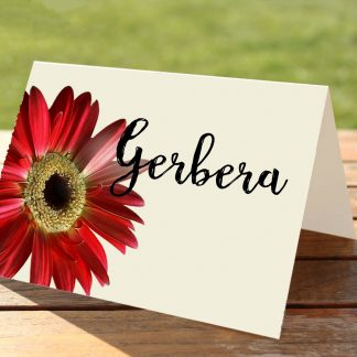 Red Gerbera Wedding Place Card Table Numbers and Names