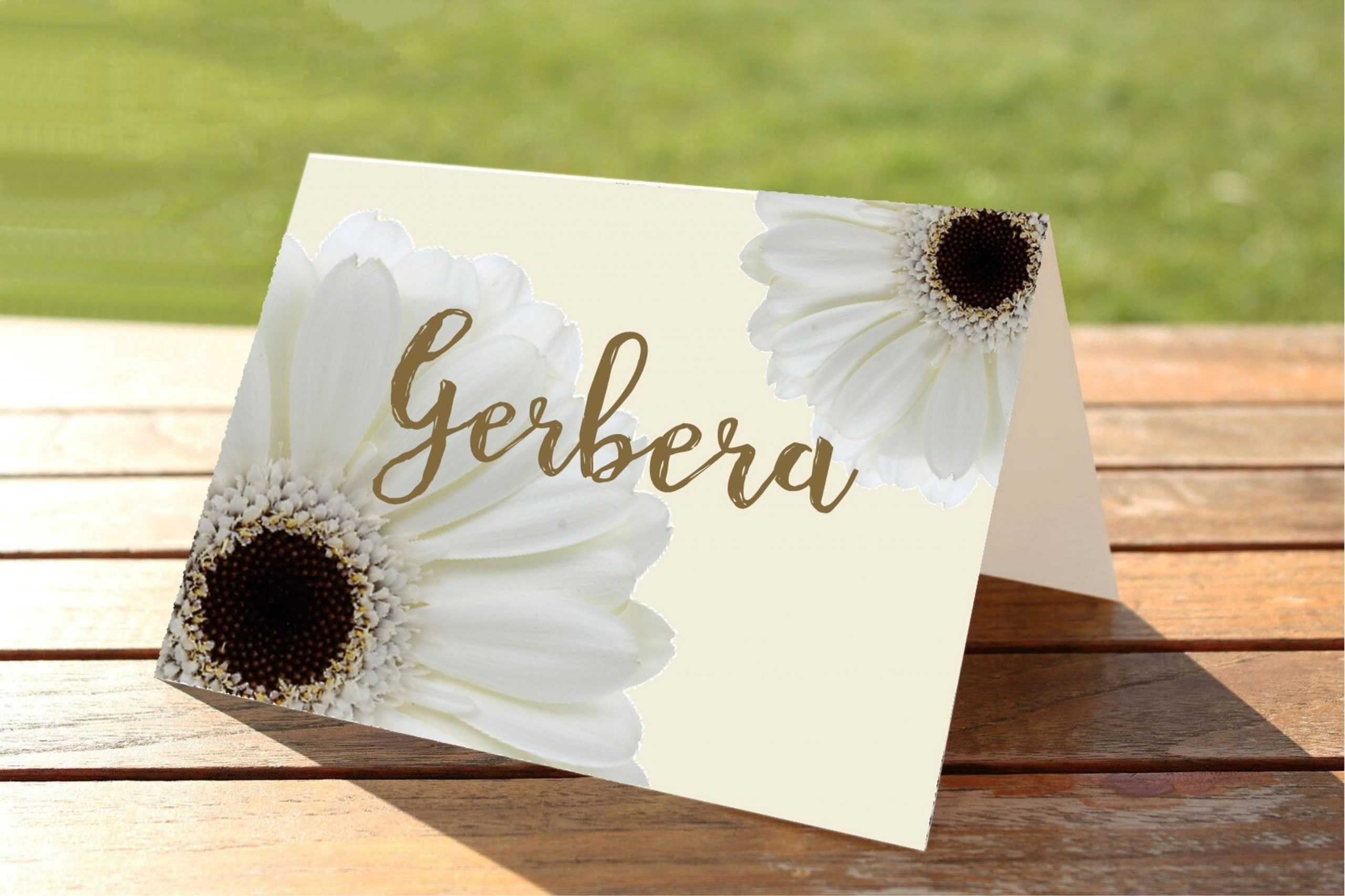 White Gerbera Wedding Table Numbers and Names