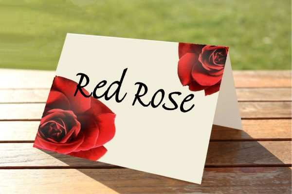 Double Red Rose Wedding Table Numbers / Names