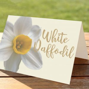 White Daffodil Welsh Flower Wedding Table Numbers / Names