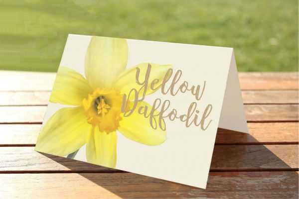 Yellow Daffodil Welsh Flower Wedding Table Numbers / Names